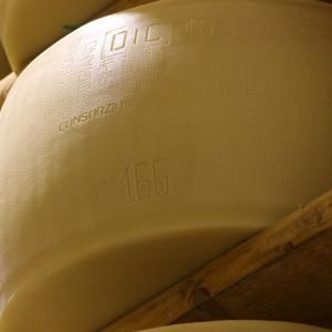Forme di Parmigiano Reggiano che inizia la stagionatura
